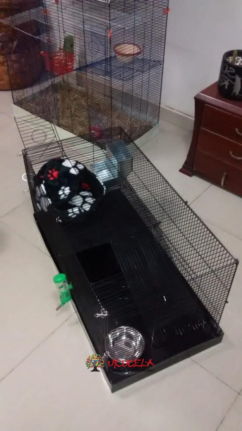 Jaula para roedores pequeños.