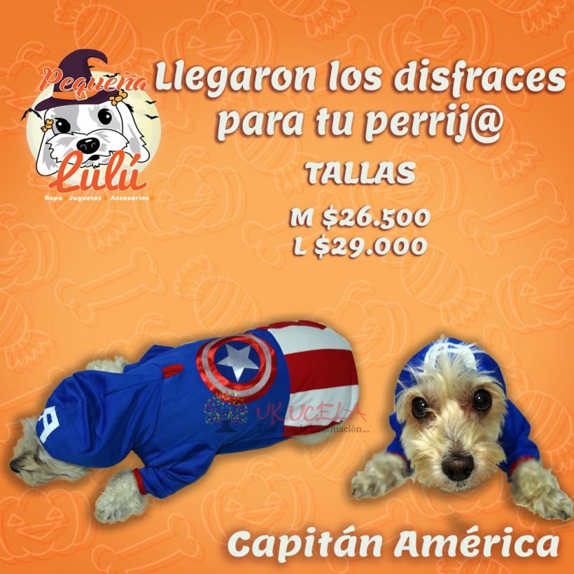disfraz para perros 14