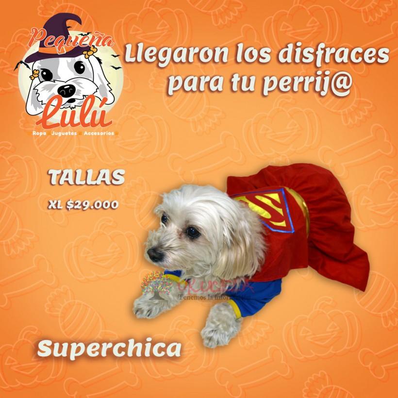 disfraz para perros 13